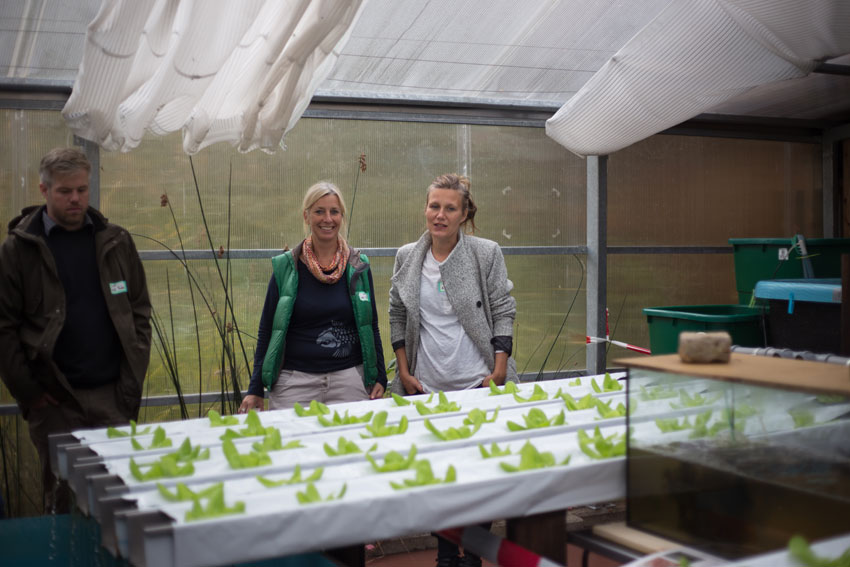 151006-Roof-Water-Farm-{Susanne-Feldt}-10